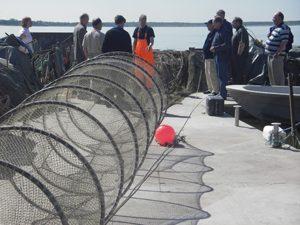 Hoitokalastus, pyydysten vuokraus ja kalastuskurssit